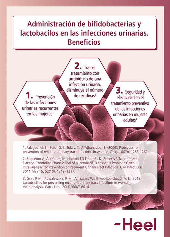 Lactobacilos vaginales: ¿qué beneficios aportan? - HeelProbiotics - HeelEspaña