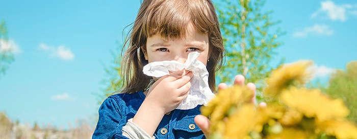 Síntomas de rinitis: molestia todo el año - HeelEspaña