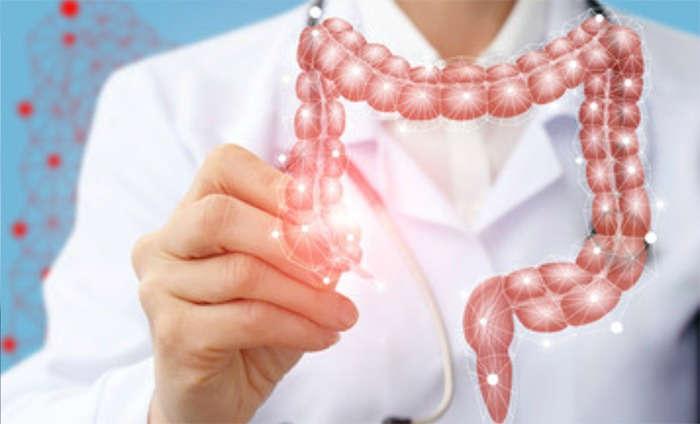 Desajustes de la microbiota: ¿por qué se producen? - HeelEspaña