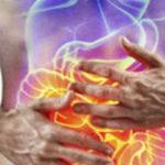 Probióticos: prevenir los desajustes de la microbiota - HeelEspaña