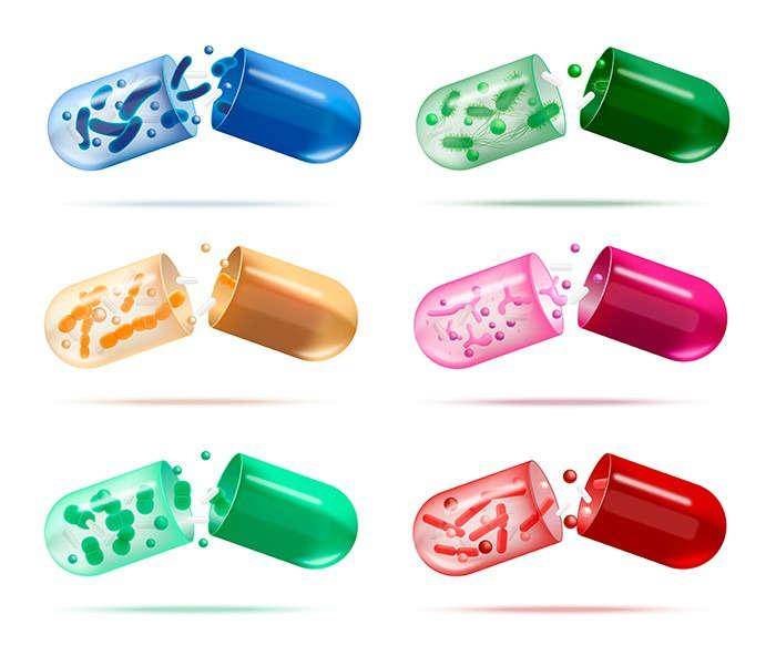 Cuáles son las características de un probiótico - HeelProbiotics - HeelEspaña