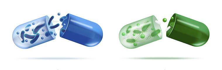 Mejor probiótico: requisitos - HeelProbiotics -HeelEspaña