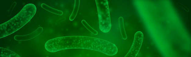 Salud intestinal | Consecuencias en la cuarentena: probioticos - HeelEspaña