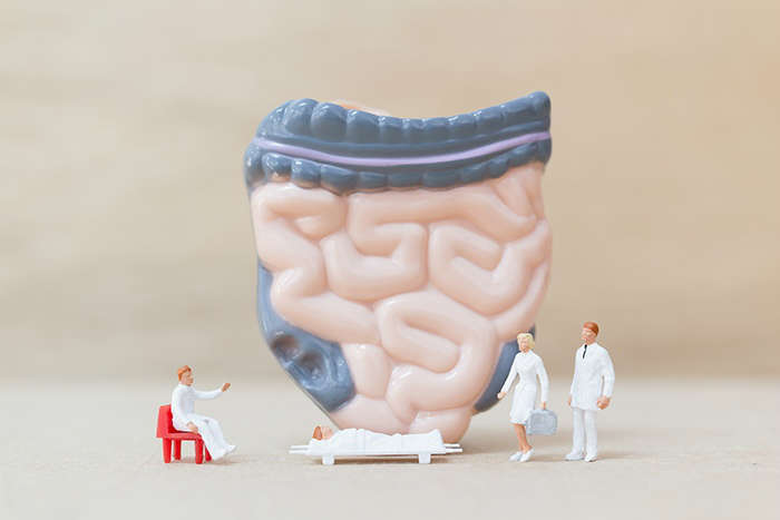 Conexión de las bacterias intestinales con patologías - HeelProbiotics - HeelEspaña