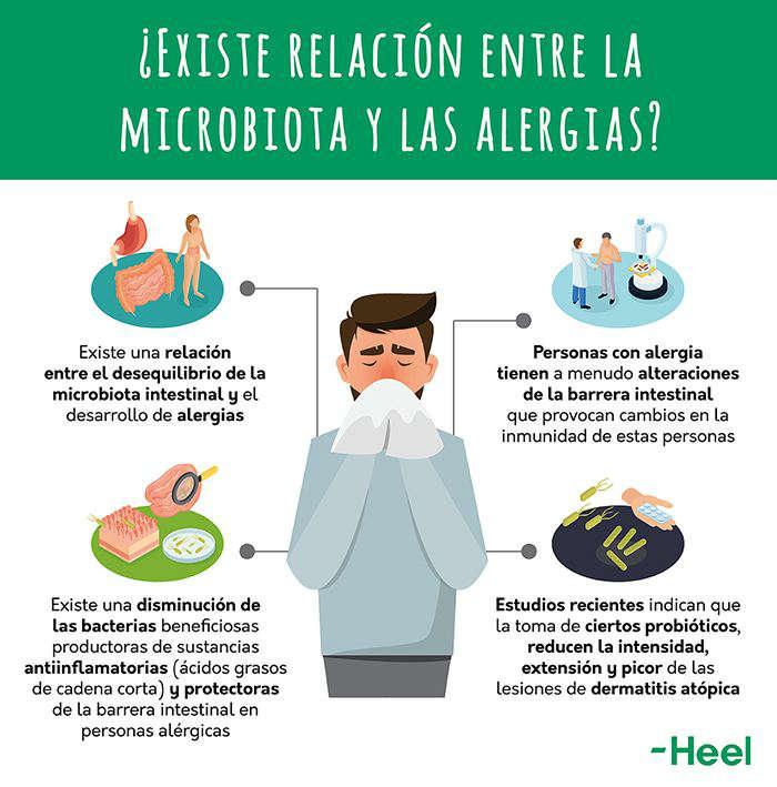 Buscamos la relación entre microbiota y alergia