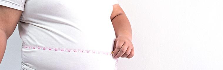 ¿Cuál es la relación entre microbiota y obesidad?