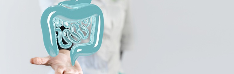 Del intestino a la piel: ¿cómo influye la salud intestinal en nuestra piel?