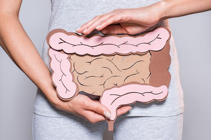 Características del microbioma
