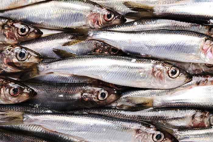 Beneficios para la salud: beneficios de los omega 3