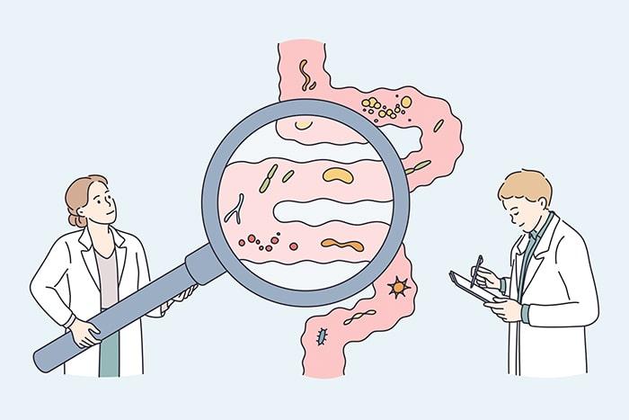 Papel de los hongos en la salud intestinal